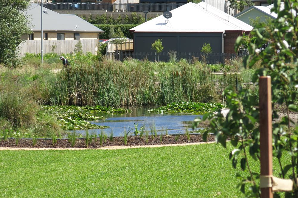 Sugar Valley Lifestyle Estate riparian zone