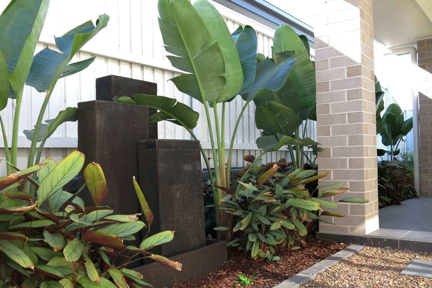 Lush shade-loving plants in the entertaining area of the Rumba display home